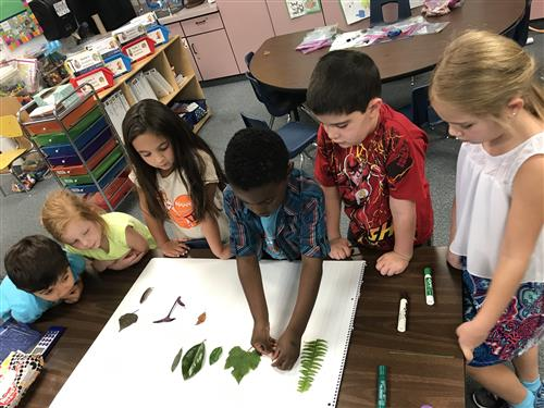 Classify and Sorting