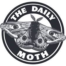 The Daily Moth