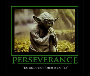 """Do or do not. There is no try."" - Yoda"