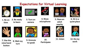 Expectations for Virtual Learning